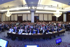 The delegates to the 5th International Conference on Concussion in Sport